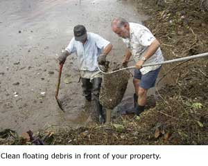 Clean debris in front of your property.